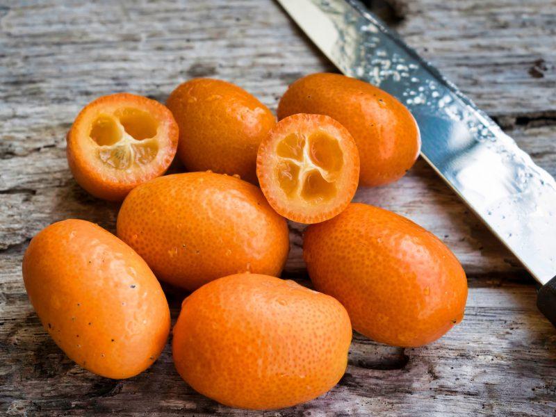 Curiosidades de la naranja china o Kumquat
